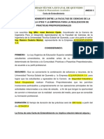 Carta Entendimiento