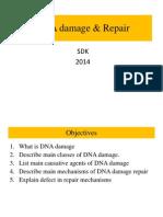 6._DNA_DAMAGE_AND_REPAIR_SDK_2014.pptx