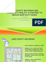 lake county michigan and community health