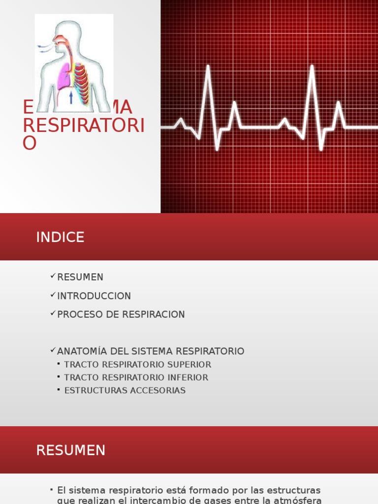 Sistema Respiratorio de los humanos presentacion