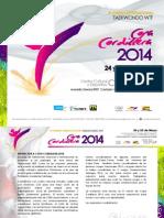 Bases Copa Cordillera 2014