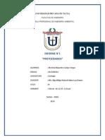 informe protozoaerios