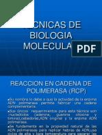 Bioogia Molecular