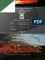 Manejo de Bosques Incendiados