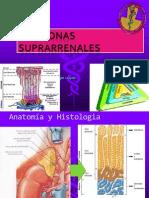 Glucolisis y Gluconeogenesis