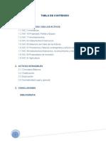 1ra Entrega Proy Grupal Contabilidad1