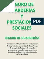 Seguro de Guarderias y Prestaciones Sociales13