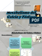 Metabolismo del Calcio y Fosforo presentación.ppsx