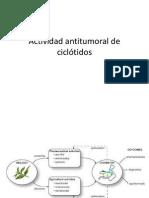 Actividad Antitumoral de Ciclótidos