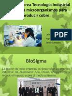 BIOSIGMA Crea Tecnología Industrial Que Utiliza Microorganismos Para