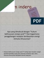 Sistem Indera Fix
