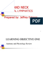 4th Lecture HeadNeck and Lympatics