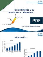 Hidrolisis Enzimatica y Su Aplicacion en Alimentos - Cristian Salazar 2012