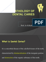 PD 4.Histopathology of Dental Caries