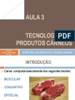 AULA 3 - ESTRUTURA DOS MUSCULOS E TECIDOS ANEXOS.pdf