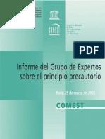 Informe del grupo de expertos sobre el principio precautorio