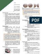 [GROSS B] 1.1 Correlative Endocrine (Kabigting)