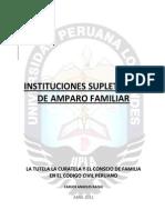 54576100-TUTORIA-CURATELA-Y-CONSEJO-DE-FAMILIA.pdf
