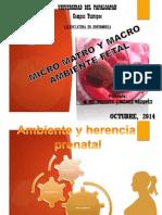 Factores Micro Macro y Matroambientales Embrion y Feto