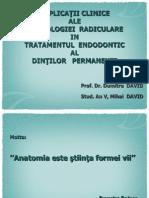 Prezentare Prof. David - Saptamana Stiintifica