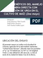 CONSERVACIÓN DE SUELO.pptx