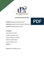 Practica Biorreactor 2