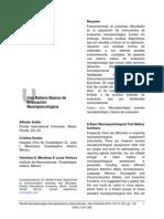 Evaluacion Neuropsicologica(FAs, Token, Memorio Otros)