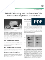 DNA_RNA Blotting With the Trans-Blot SD Semi Dry Electrophoretic Transfer Cell