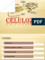 Celuloza-proiect.ppt