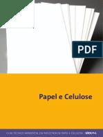 p+l_papel_e_celulose