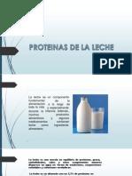 Proteinas de La Leche Bio