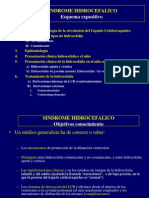 420-2014-02-24-11 Hidrocefalia ppt.pdf