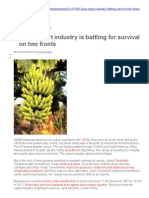 Banana Diseases