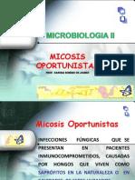 micosis oportunista 6 Micologia