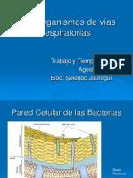 Microbiologia Vias Respiratorias