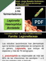 Bacterias GRAMNEGATIVAS no fermentadoras