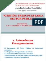 19 Gestion Presupuestaria Sector Publico (1)