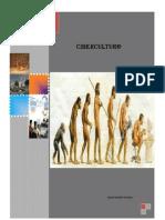 Modulo Cibercultura