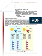 Acidos_nucleicos_lectrura_