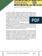 INFORME 1 - CONGELACION DE PULPA DE FRUTAS .docx