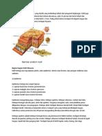 Biopotensial Pada Sel (Kulit)