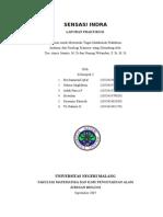laporan indera 2