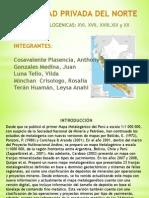 Franjas Metalogénicas 16-20 del Perú