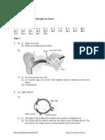 Sc F2 - Answers