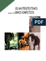 Helmintoses Gastrintestinais Dos Animais Domesticos Modo de Compatibilidade