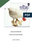 Proyecto Criadero de Pollos Para Consumo Urbano2