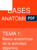 Tema 1 (B. Anatómicas)