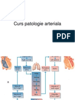 Curs artere+vene.ppt