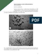 figuras_de_nodulos_y_costras_de_M.pdf