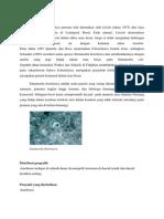 Entamoeba Histolytica Makalah